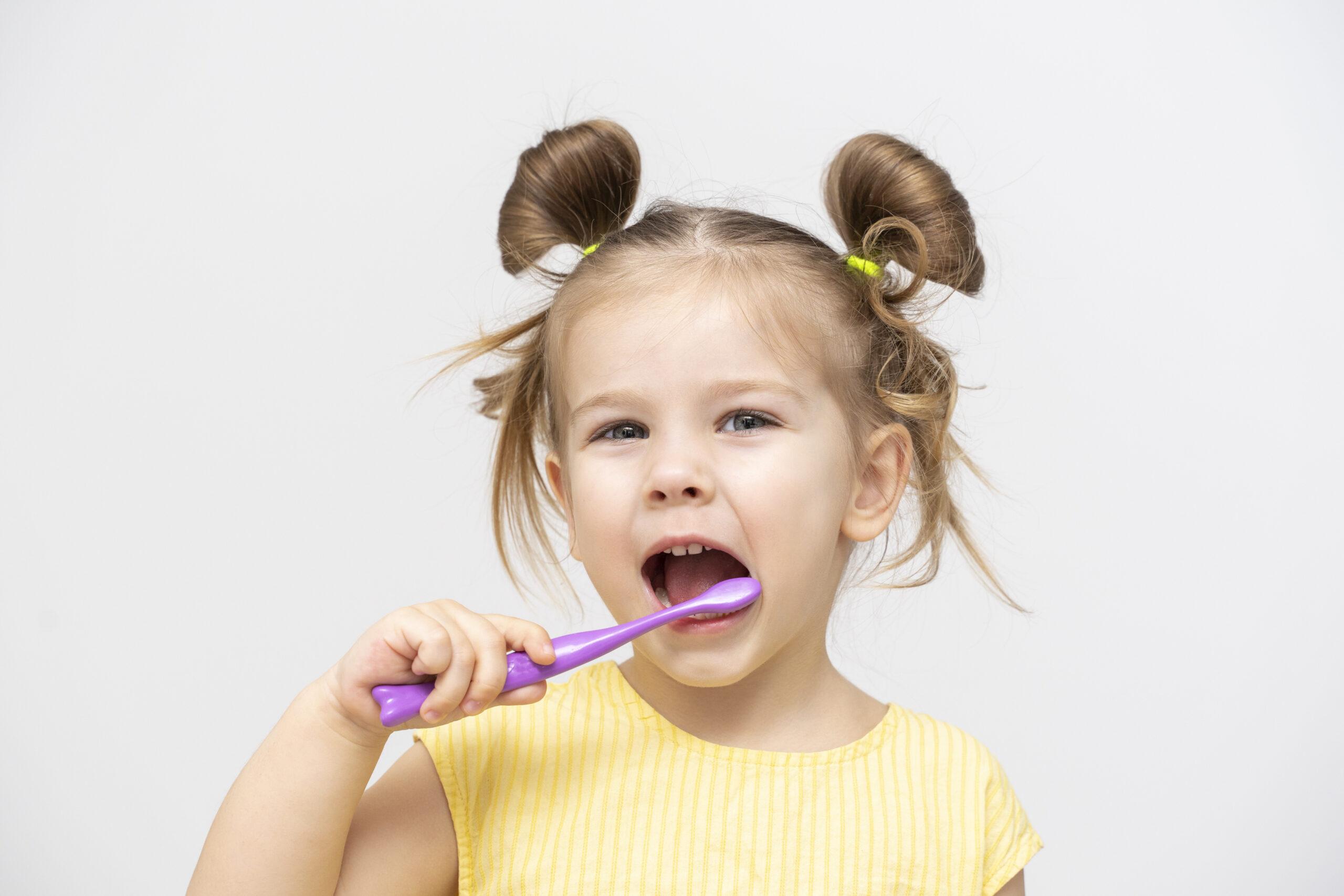 ¿Cuáles son las diferentes etapas de la dentición?